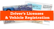 Drivers License Image detail image