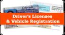 Drivers License Image thumbnail image