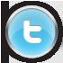 Chrome Twitter Icon detail image