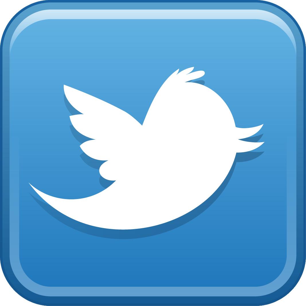 Twitter logo detail image
