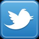 Twitter logo thumbnail image