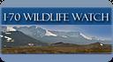 Wildlife Watch thumbnail image