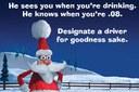 Santa Designate Driver