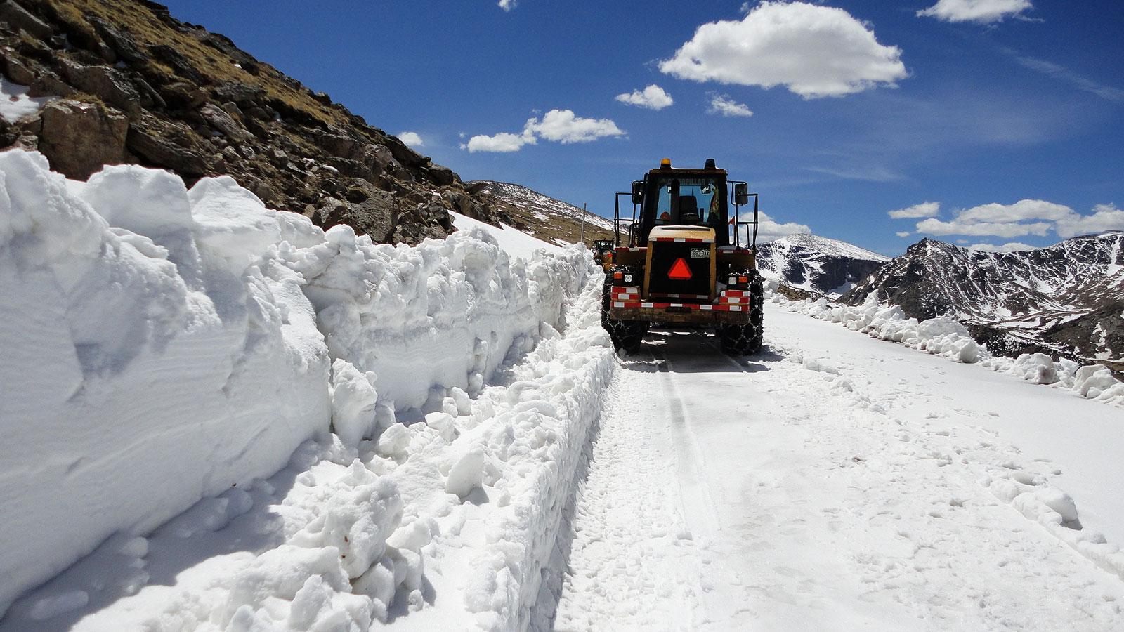 WinterWebBkgd3 detail image