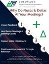 Pluses and Deltas Flyer.jpg thumbnail image