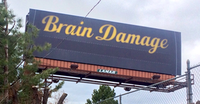 braindamagesign