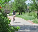 Rider in Cherry Creek