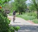 Rider in Cherry Creek