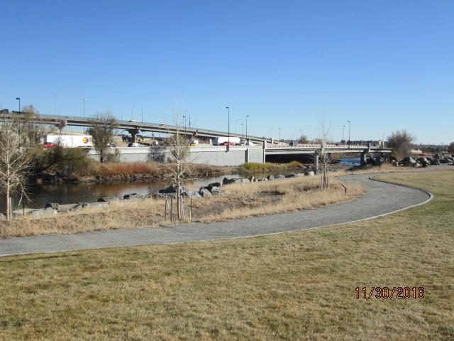 View from Johnson Habitat Park