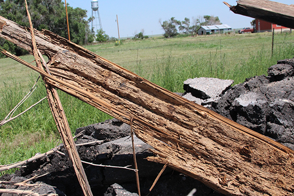 Termite wood rot.jpg