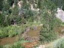 100_0523.jpg thumbnail image
