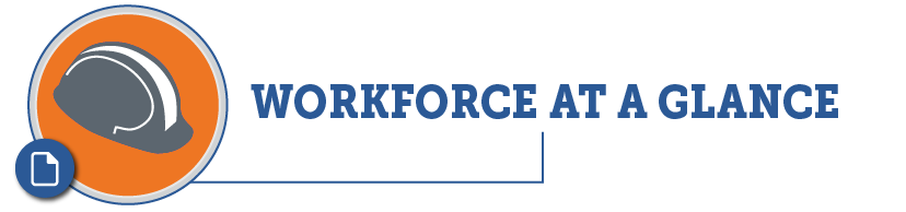 Workforce at a Glance PDF