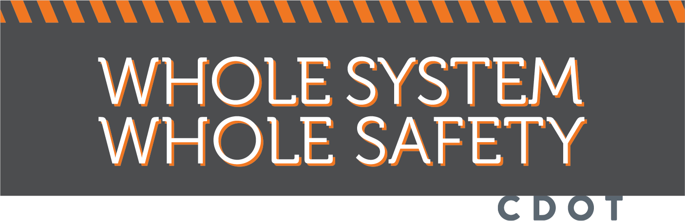 Whole System Whole Safety.png