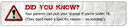 dyk_parents_pull_license.png thumbnail image