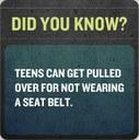 seatbelt banner