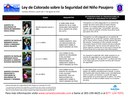 Passenger Safety Law - Spanish thumbnail image