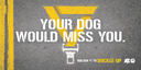 Your dog would miss you