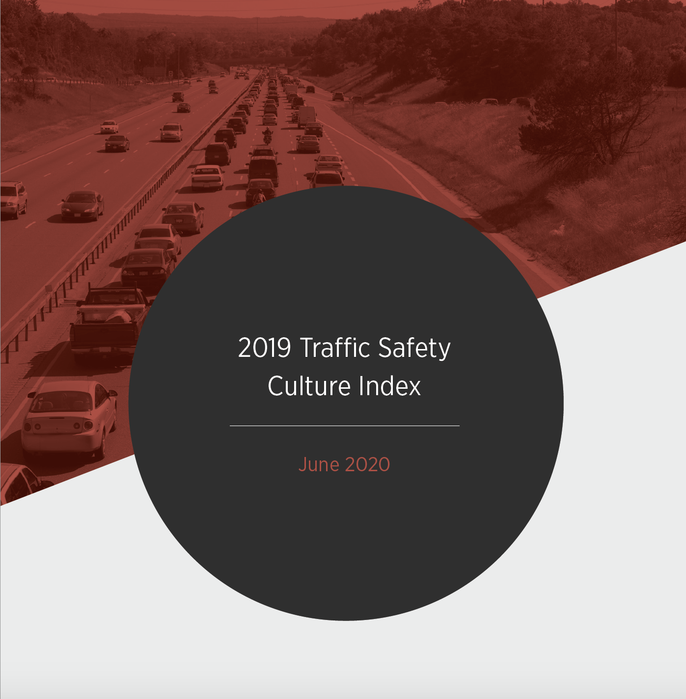 Traffic Safety Culture Index 1.png detail image