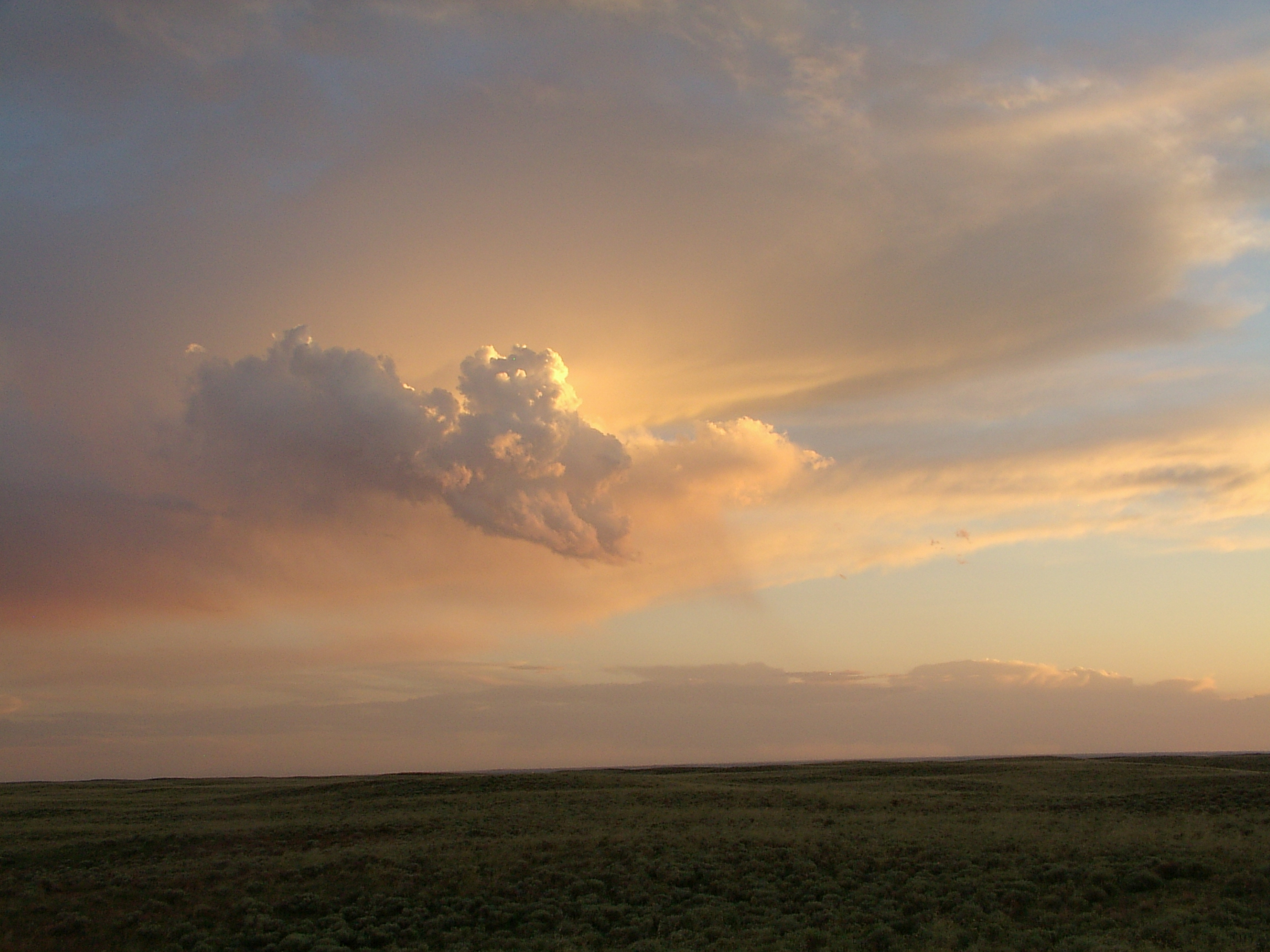 Plains Sunset detail image
