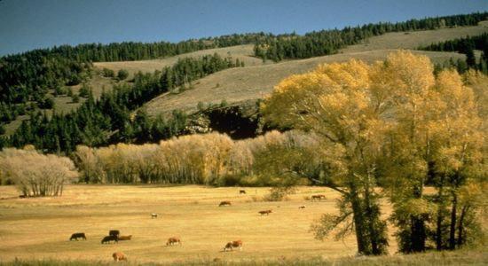 Colorado River Headwaters 1