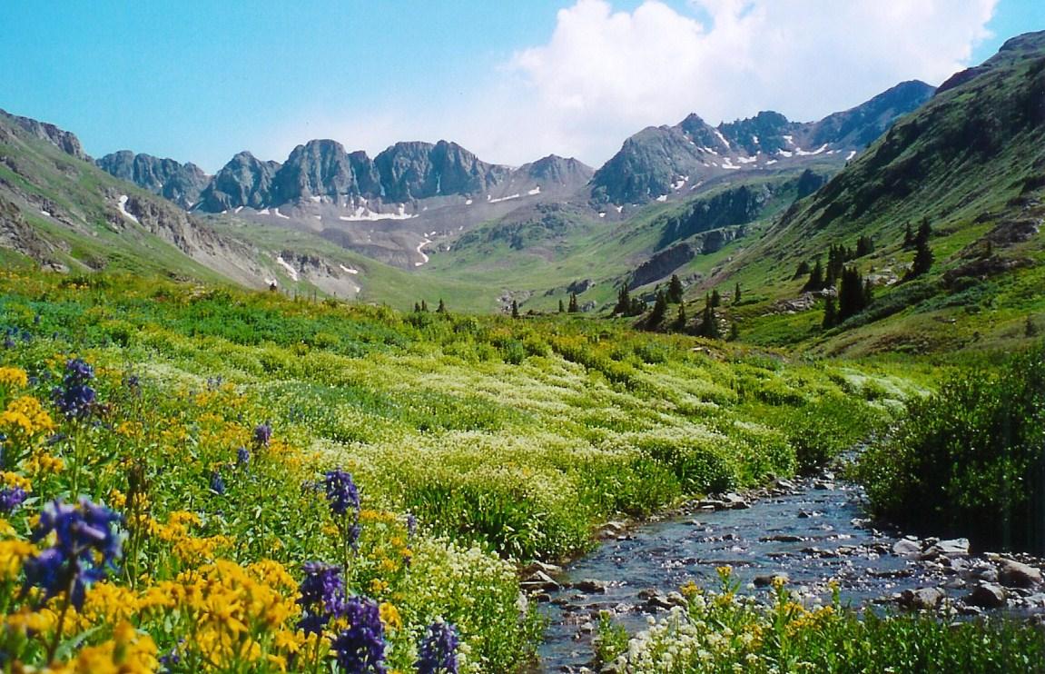 Alpine Loop - American Basin detail image